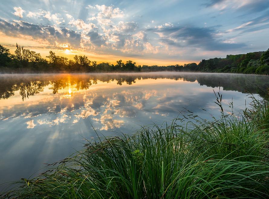 Donauauen Sonnenaufgang