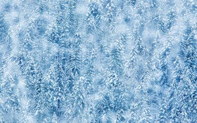 "Bildpräsentation ""Schnee"""