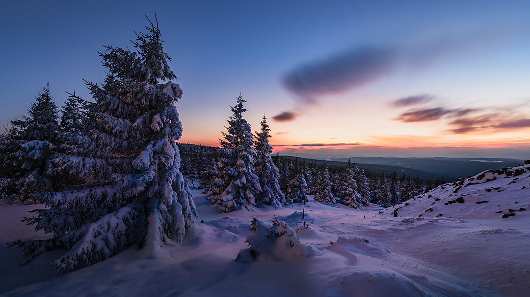 Winter im Harz