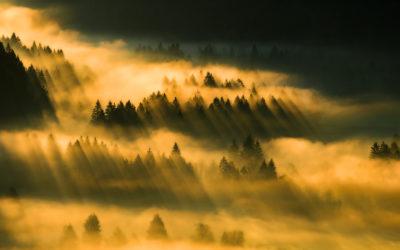 Mit Leichtigkeit Landschaftsbilder produzieren?