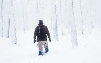 Interview mit Naturfotograf Felix Wesch
