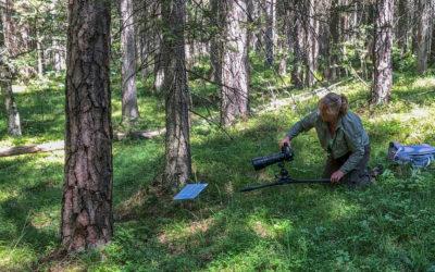 Interview mit Makrofotografin Karin Rollett-Vlcek