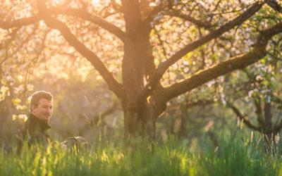 Frühling in der Streuobstwisese