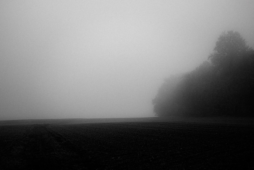 Novemberspaziergänge-001_