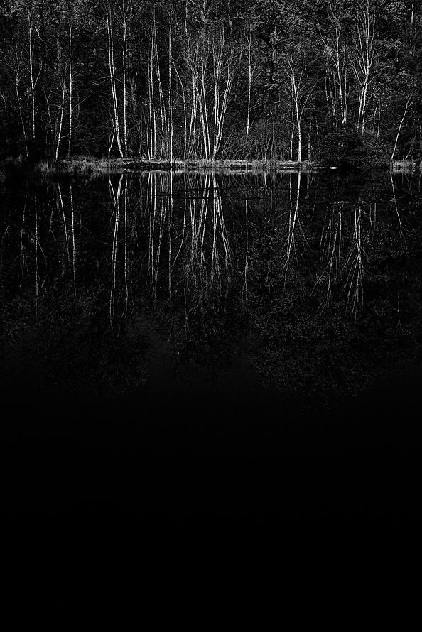 Novemberspaziergänge-011_