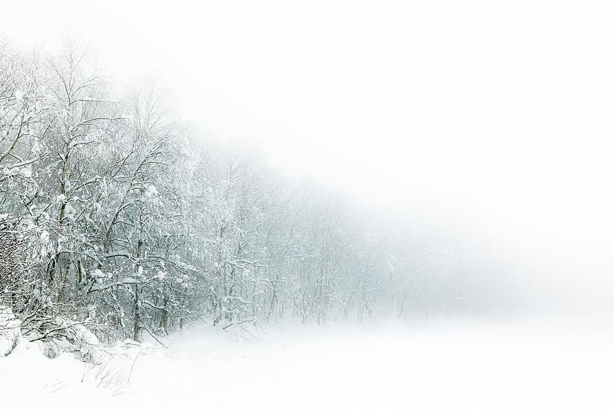 Whiteout 009_