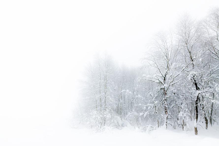 Whiteout 010_