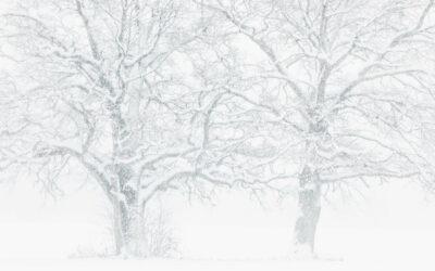 """Lesergalerie """"Winterbilder"""""""