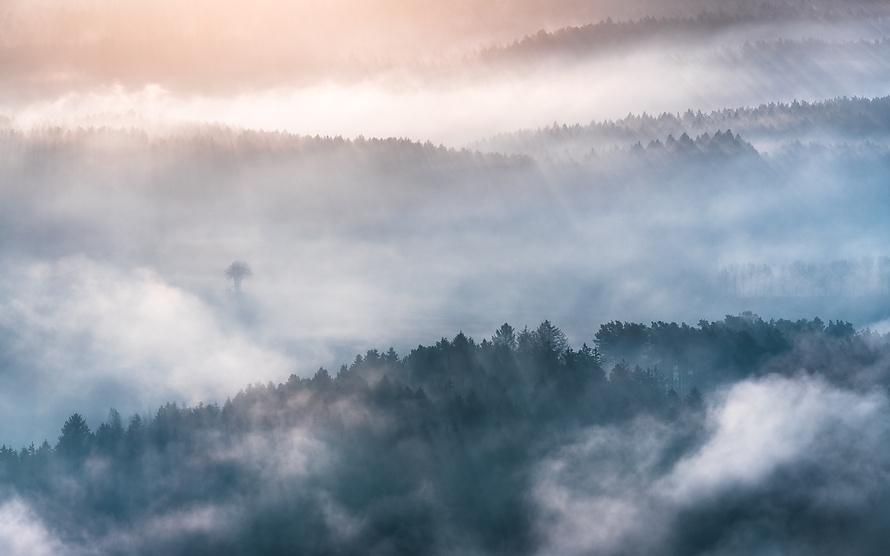 Felder unter Nebel