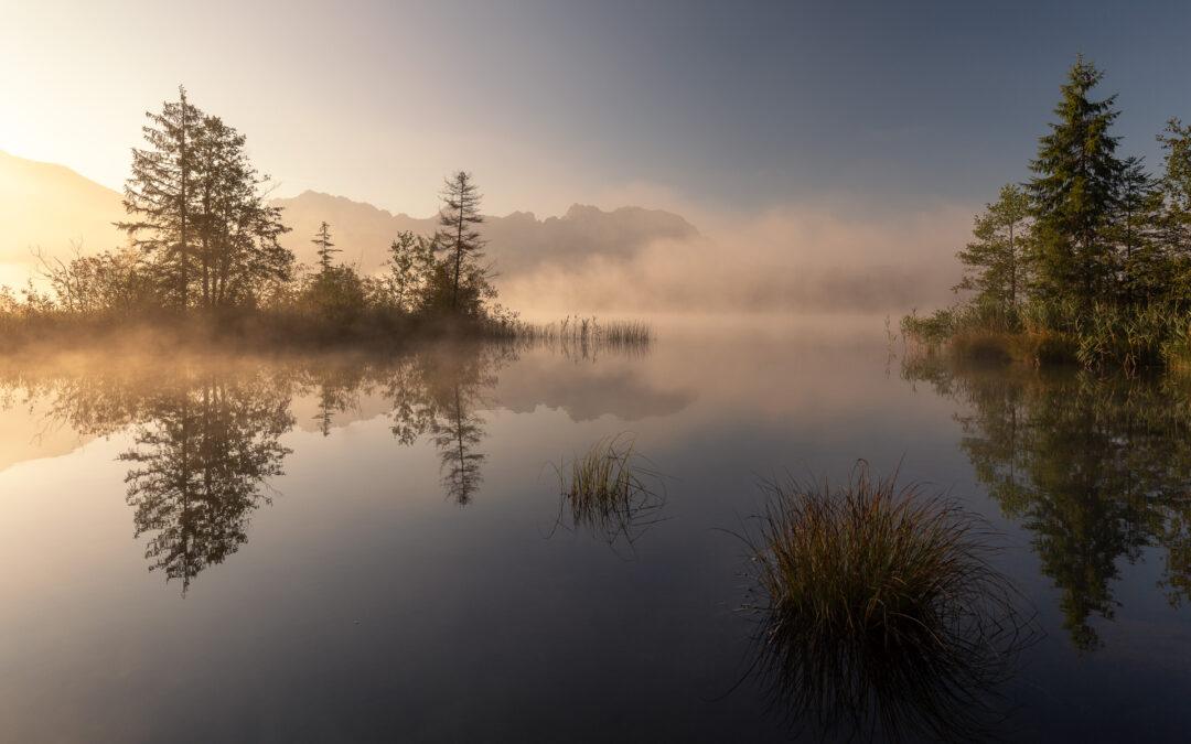 "Bildpräsentation ""Licht&Nebel"""